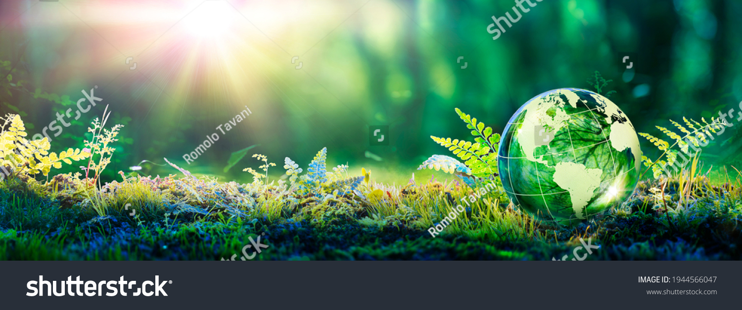 Environment Concept - Globe Glass In Green Forest With Sunlight #1944566047
