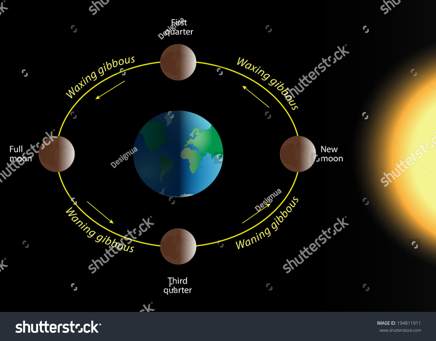 Full Moon Phase Diagram Schematics Data Wiring Diagrams Filelunar Diagrampng Wikimedia Commons Relation Phases Revolution Stock Vector 194811911 Shutterstock Crescent New