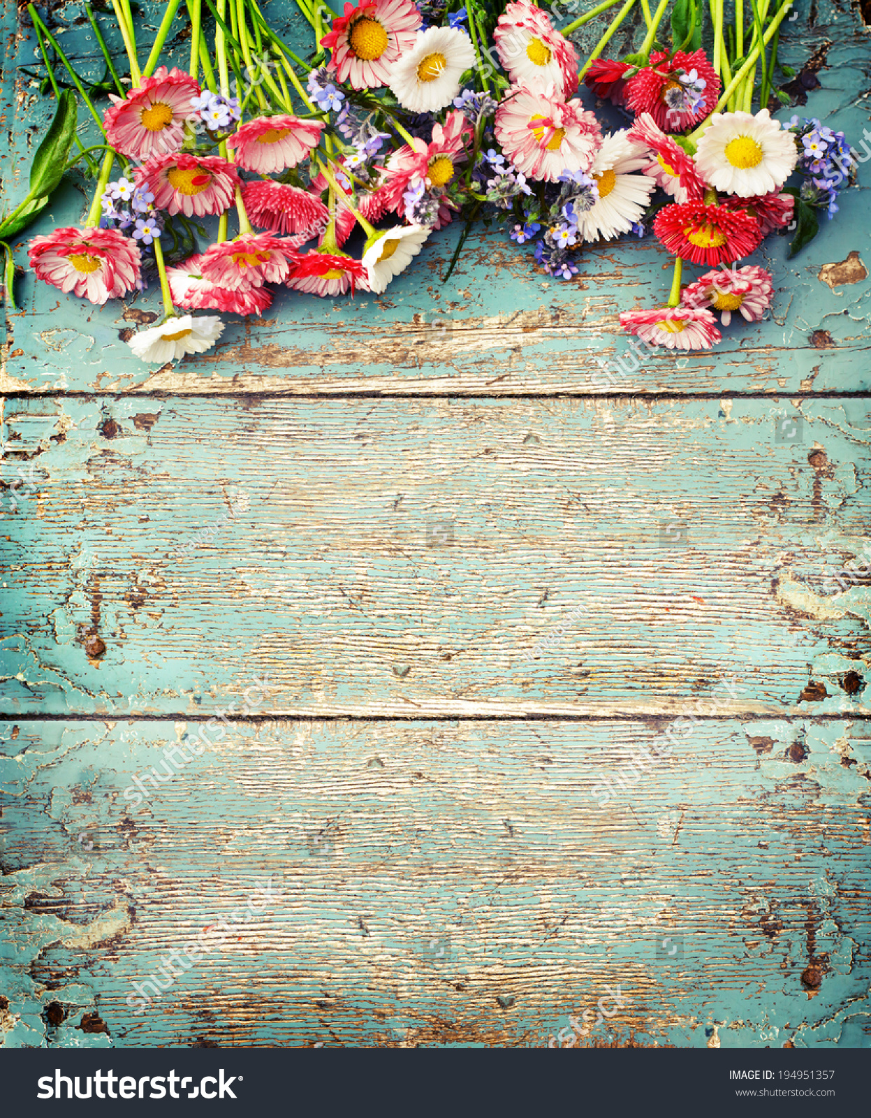 Summer Colorful Flowers On Vintage Wooden Stock Photo ...