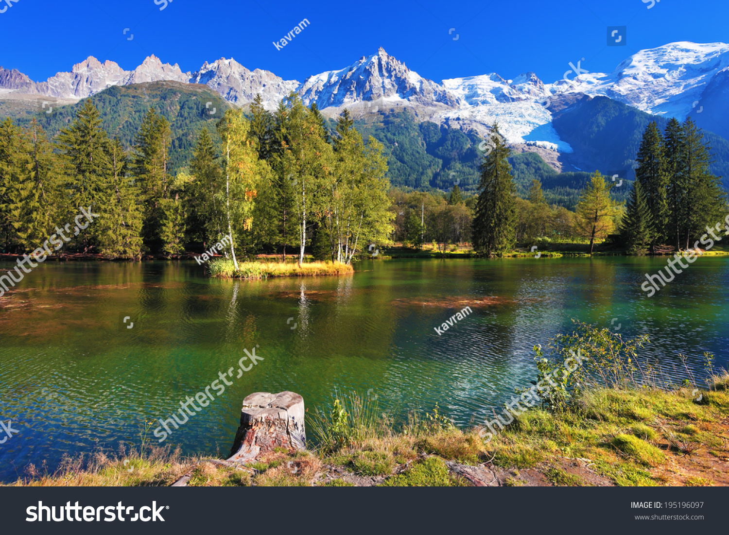 Lake cold water surrounded by trees stock photo 195196097 for The alpine lodge