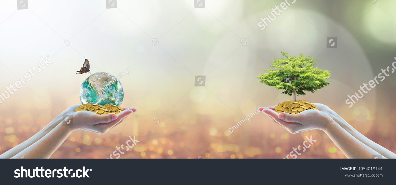Environment, social, governance (ESG) and CSR sustainable global business investment in clean industry concept with volunteer hands holding world green tree. Element of the image furnished by NASA. #1954018144