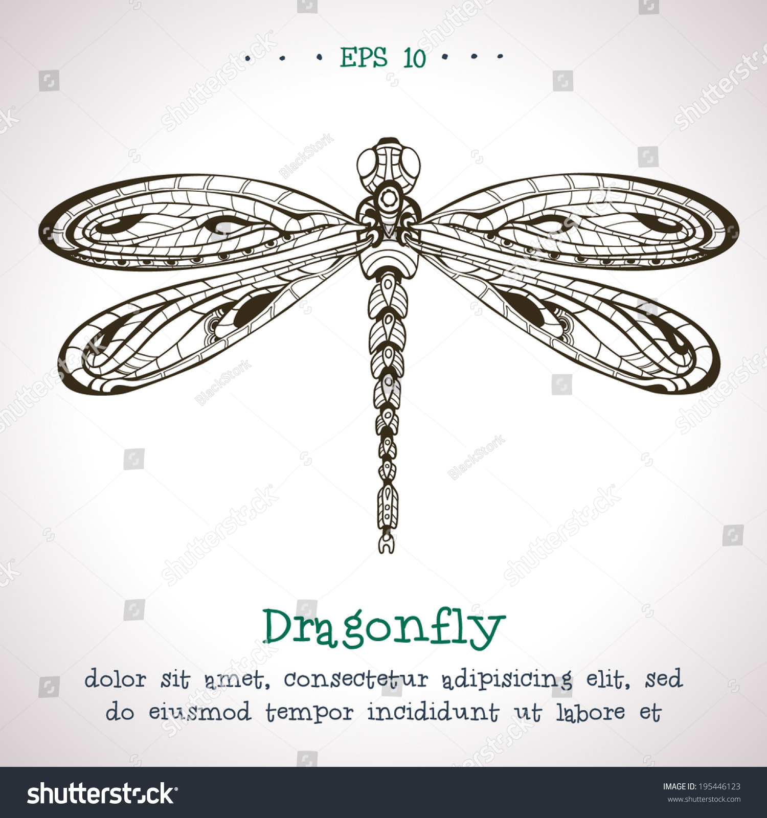 ornamental hand drawn vintage vector dragonfly stock vector