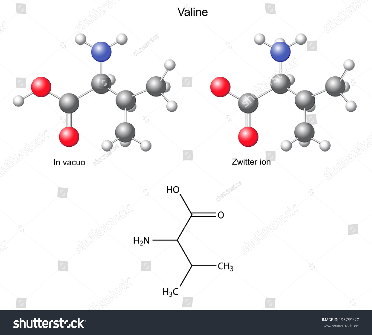 ... valine (val) - chemical structural formula and models, amino