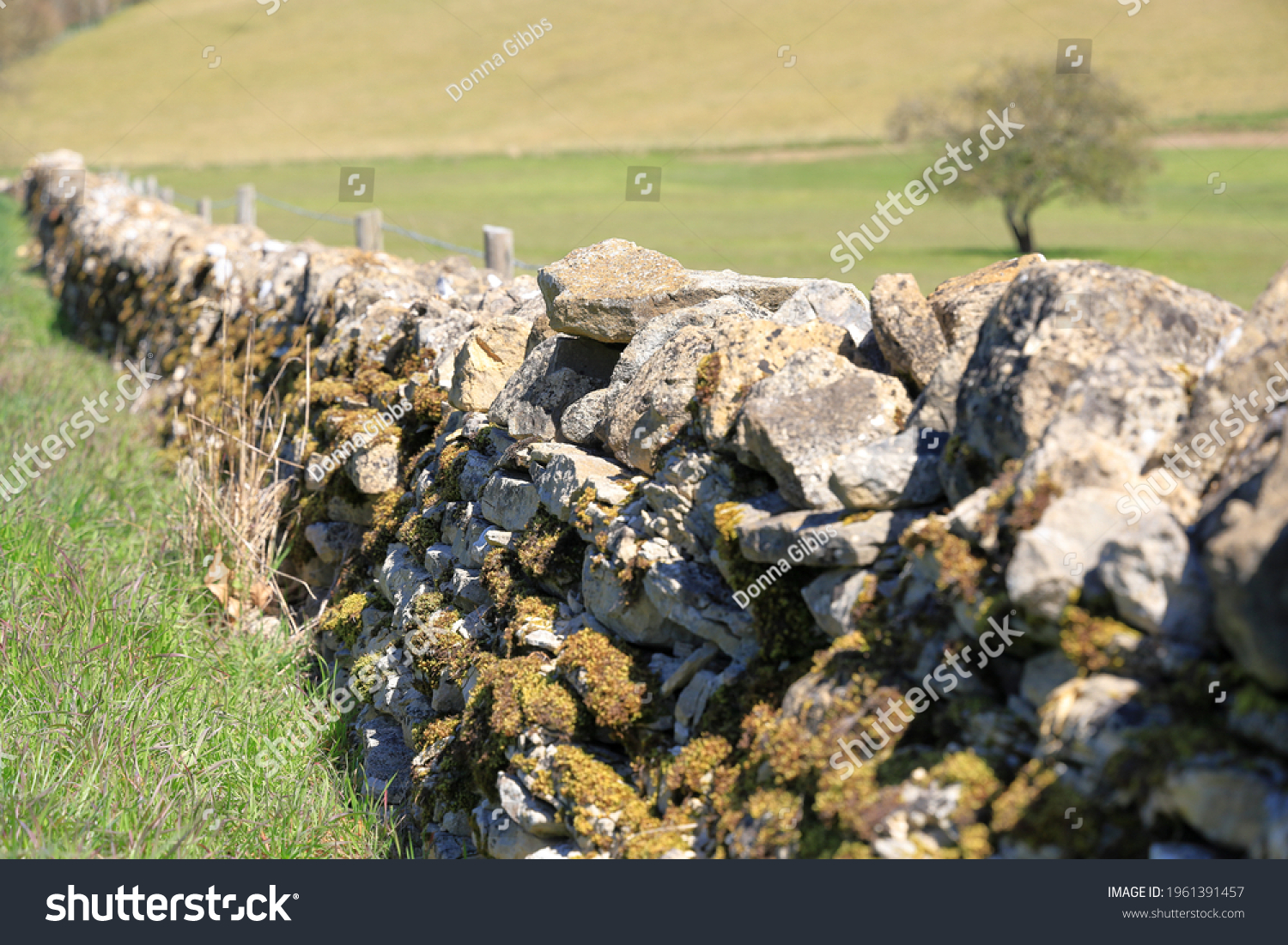 Close up details of old dry stone wall boundary covered with moss and lichen in Cotswold landscape #1961391457