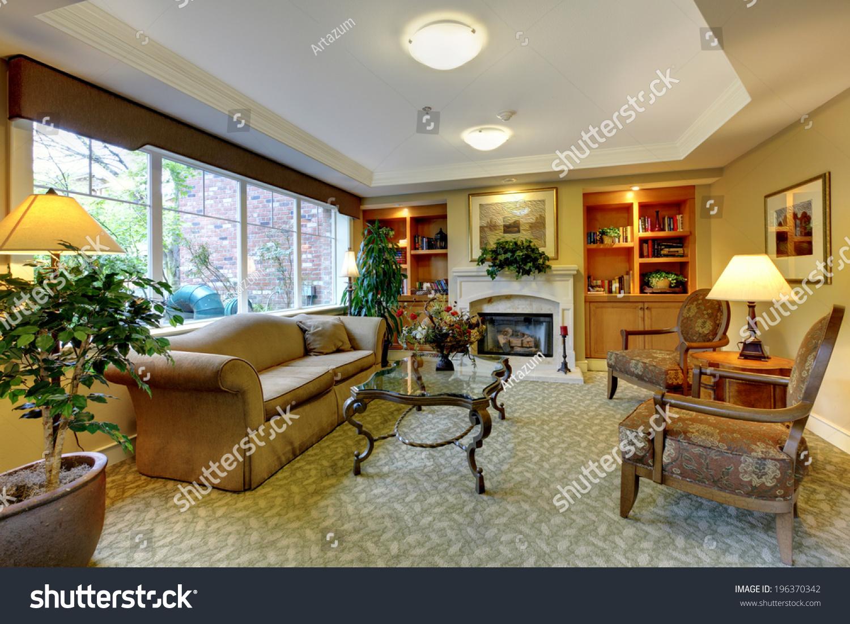 Living Room Antique Furniture Fireplace Bookshelves