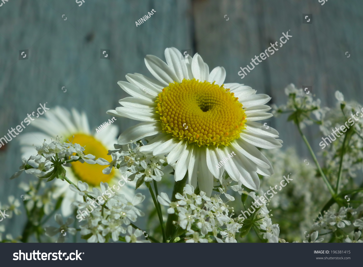 Flowers daisies bouquet wildflowers vintage floral stock photo flowers daisies bouquet wildflowers vintage floral stock photo 196381415 shutterstock izmirmasajfo