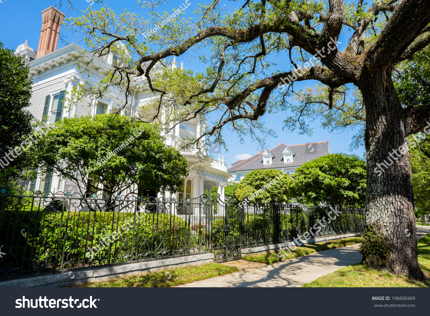 Historical southern style homes along saint charles avenue for Southern homes louisiana