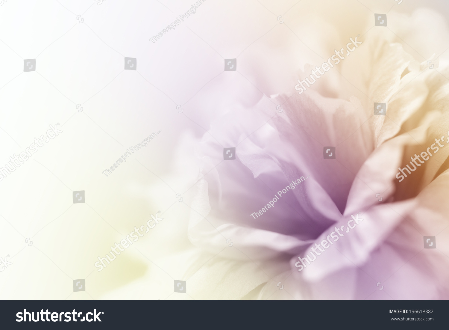 beautiful flowers made with color filters abstract #196618382