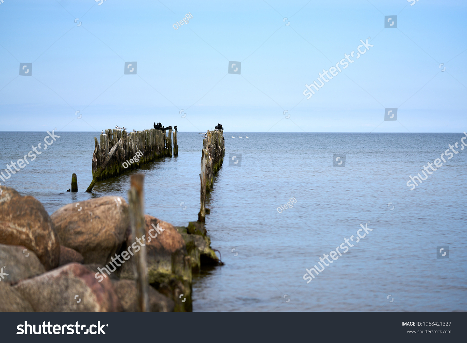 Battered wooden piles of the old pier in the Baltic Sea, leaving the horizon #1968421327