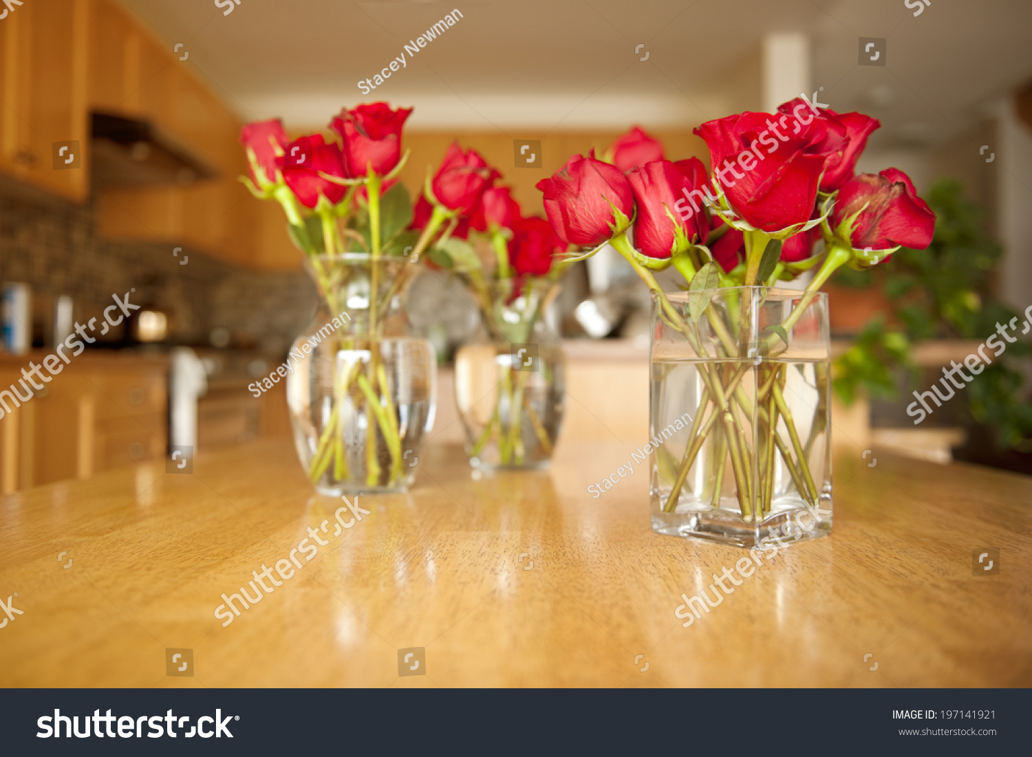 Three glass vases red roses sitting stock photo 197141921 three glass vases of red roses sitting on a kitchen counter reviewsmspy