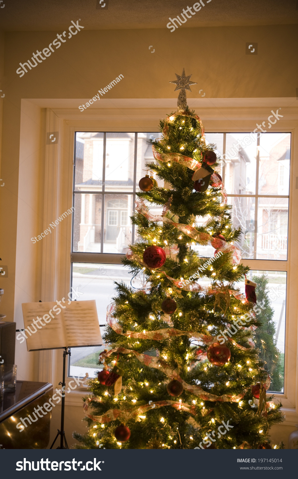 Newman Christmas Trees.Decorated Christmas Tree Front Window Stock Photo Edit Now