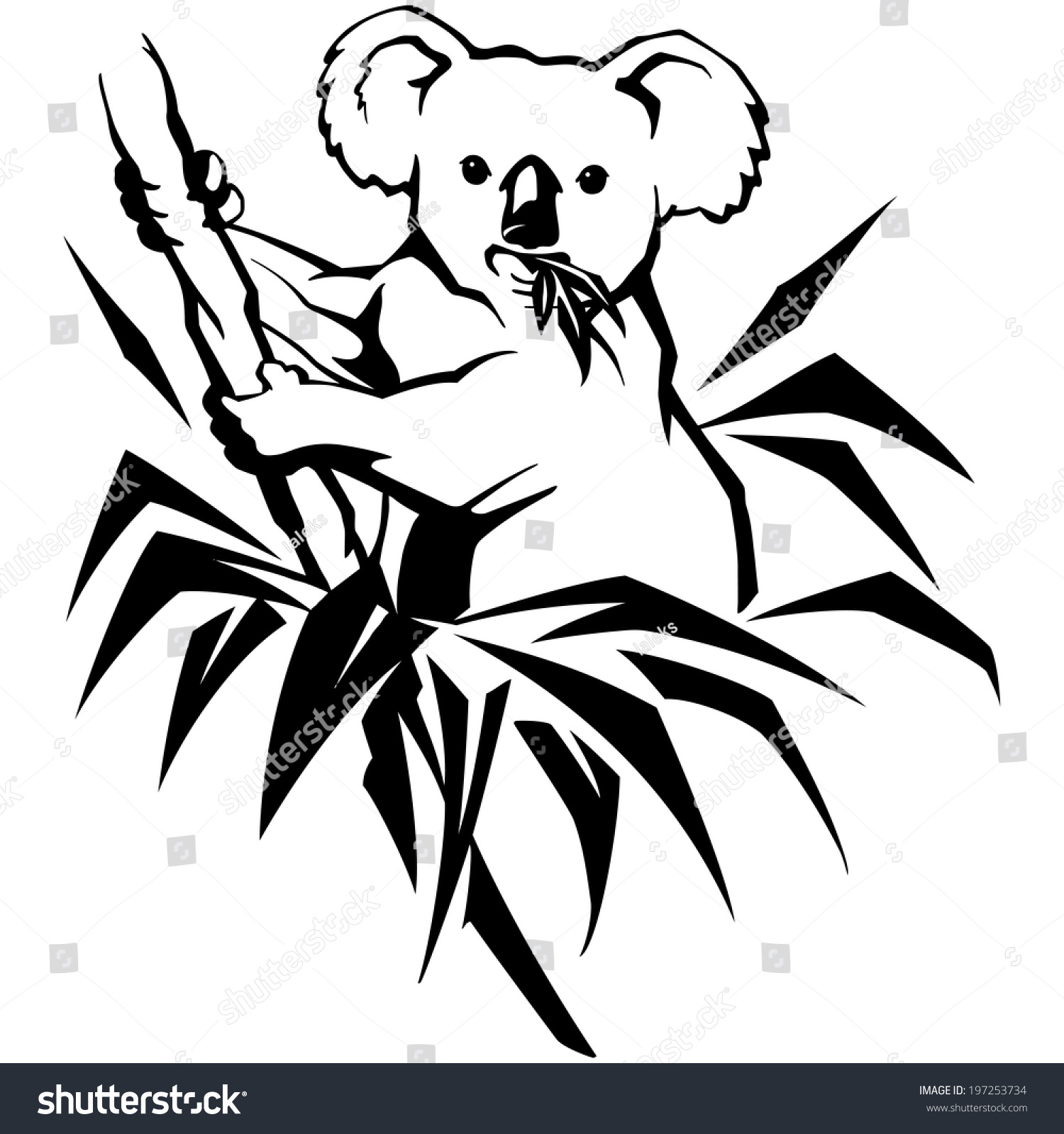 Line Drawing Koala : Koala on tree leaves australia isolated stock vector