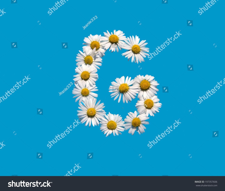 G Capital Letter Daisy Flowers On Stock Photo Edit Now 197357606