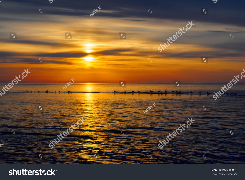 Amazing sea sunset, Nature landscape background #1975808051