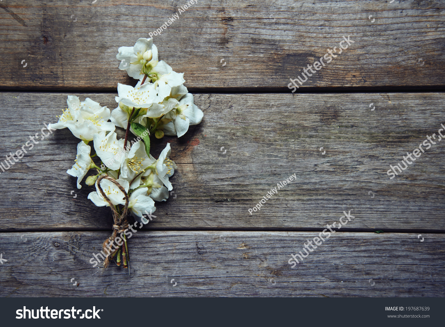 Bunch Of Jasmine Flowers On Wooden Table Ez Canvas