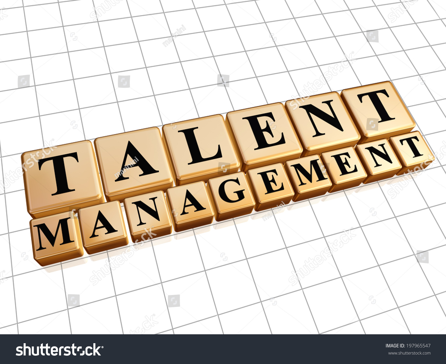 Talent Management Text In 3d Golden Cubes With Black Letters Ability Growing Concept Words