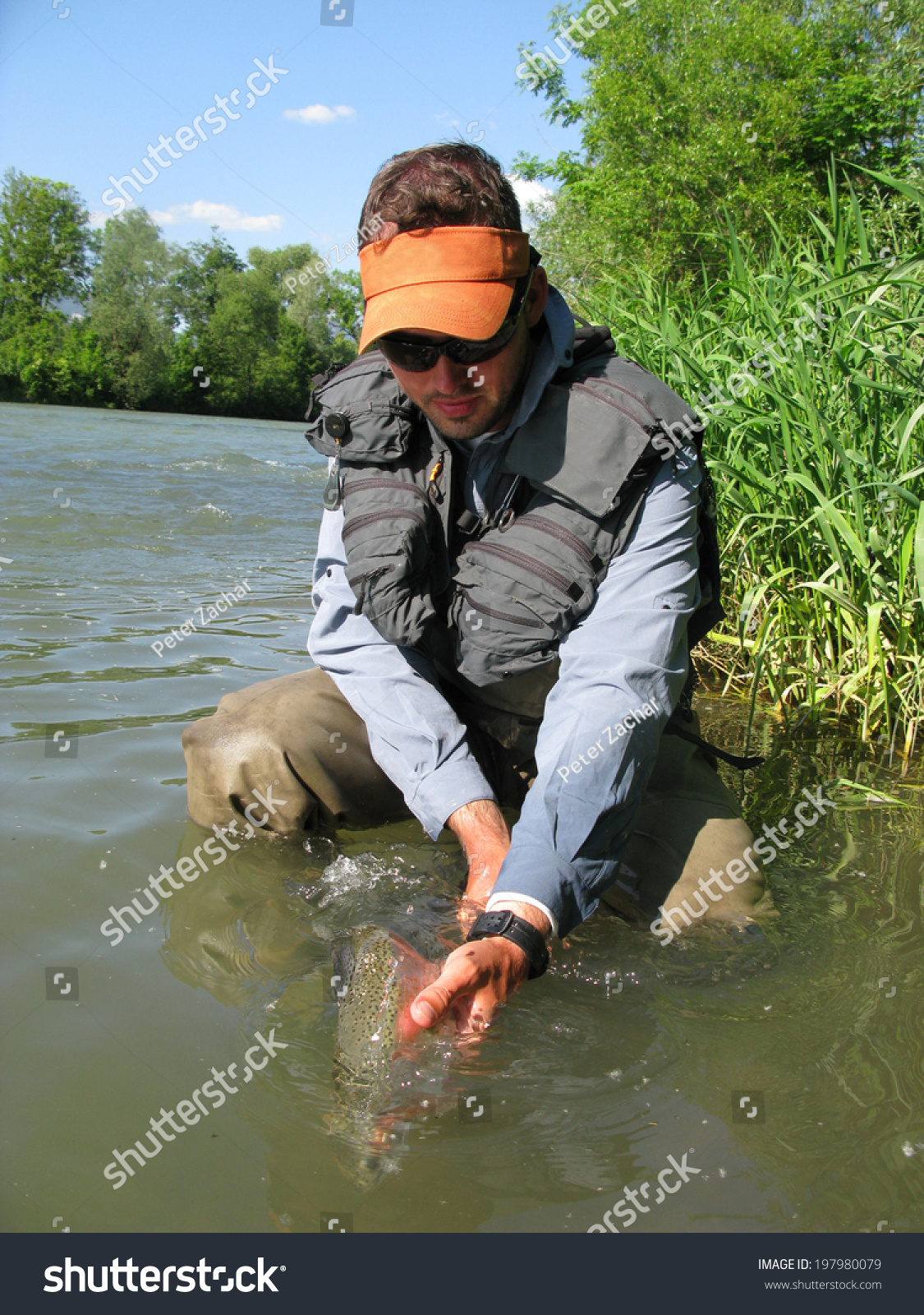 Fishing Catch And Release Stock Photo 197980079 Shutterstock