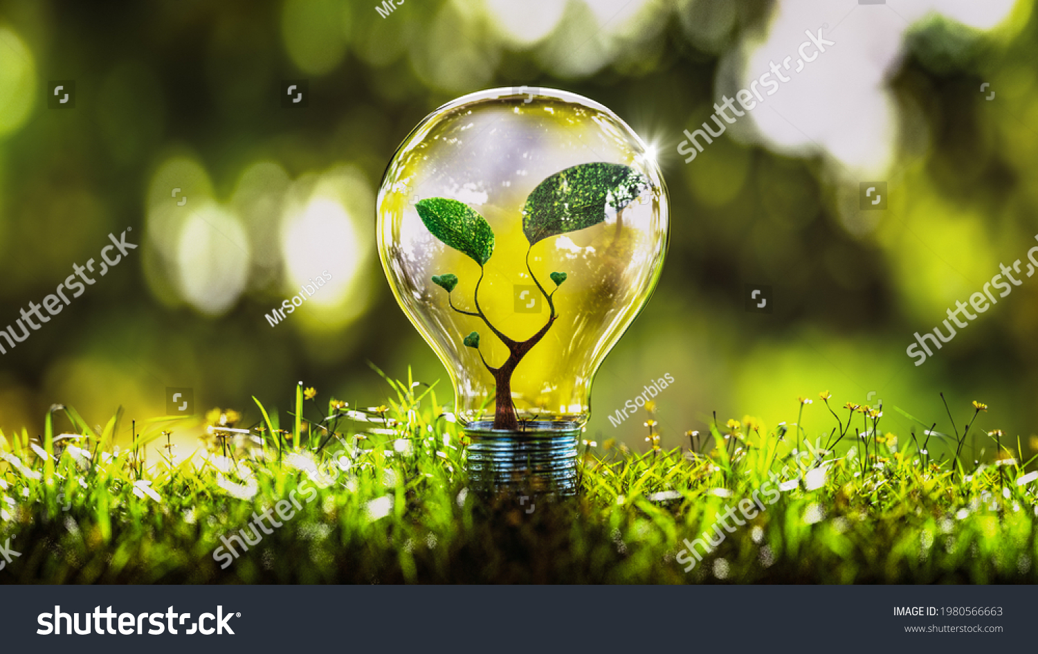 3d rendering of a light bulb with plant inside