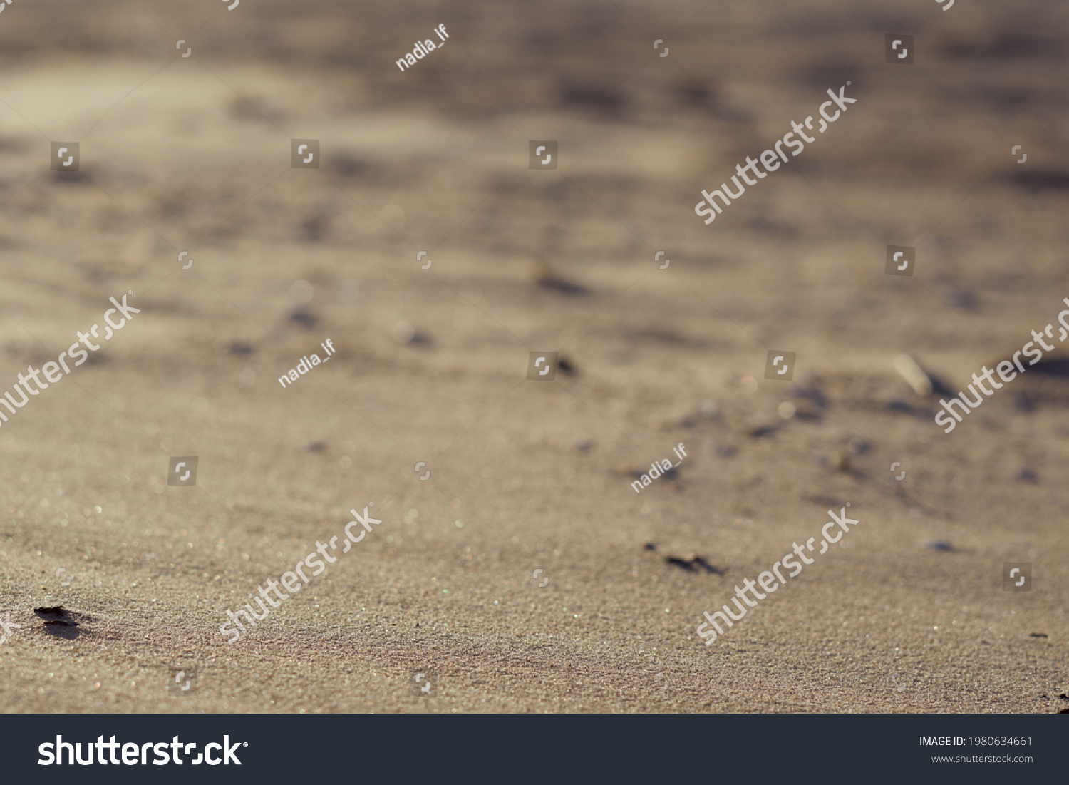 sand beach background and texture. High quality photo #1980634661