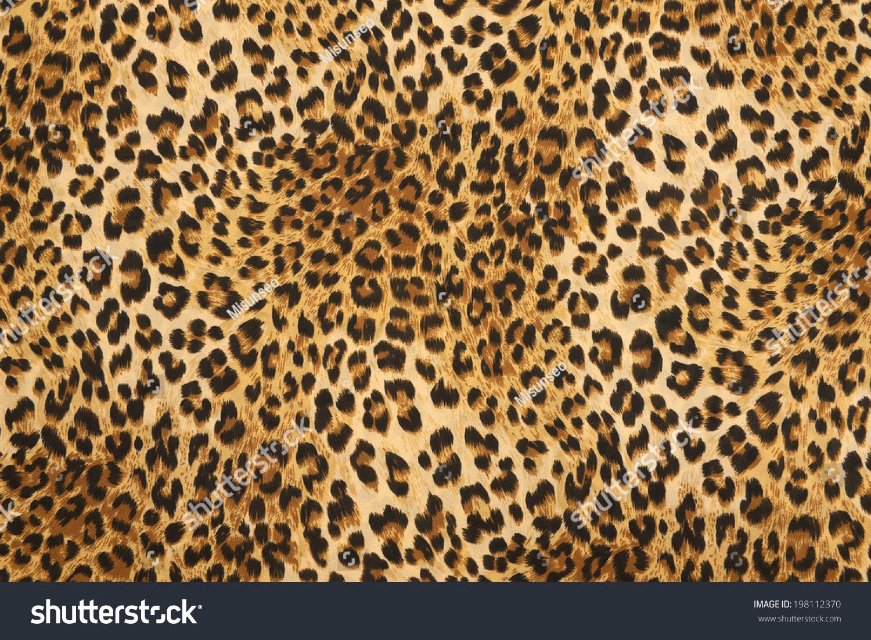 Wild Animal Pattern Background Texture Stock Photo ...