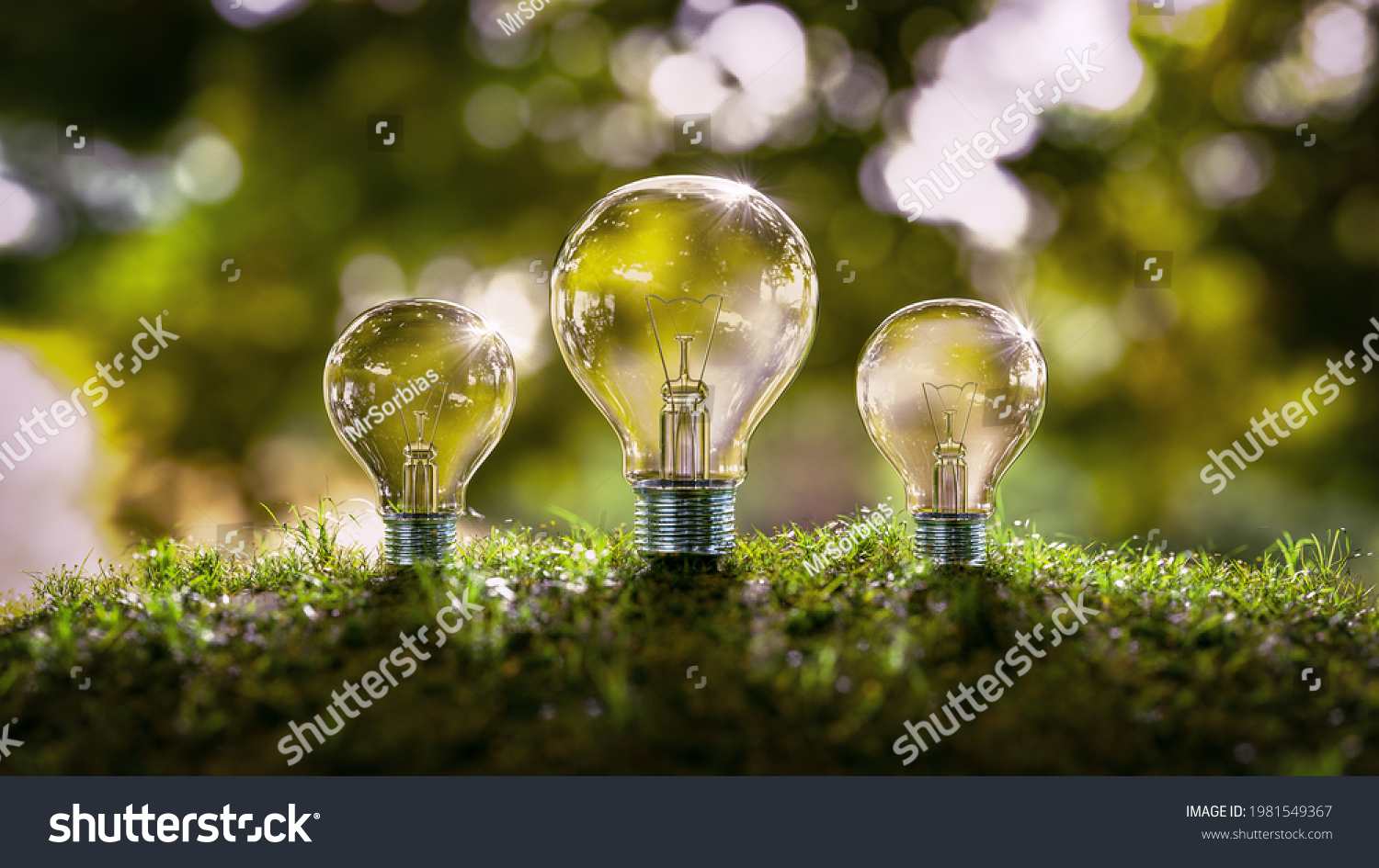 3d rendering of light bulbs in forest on moss