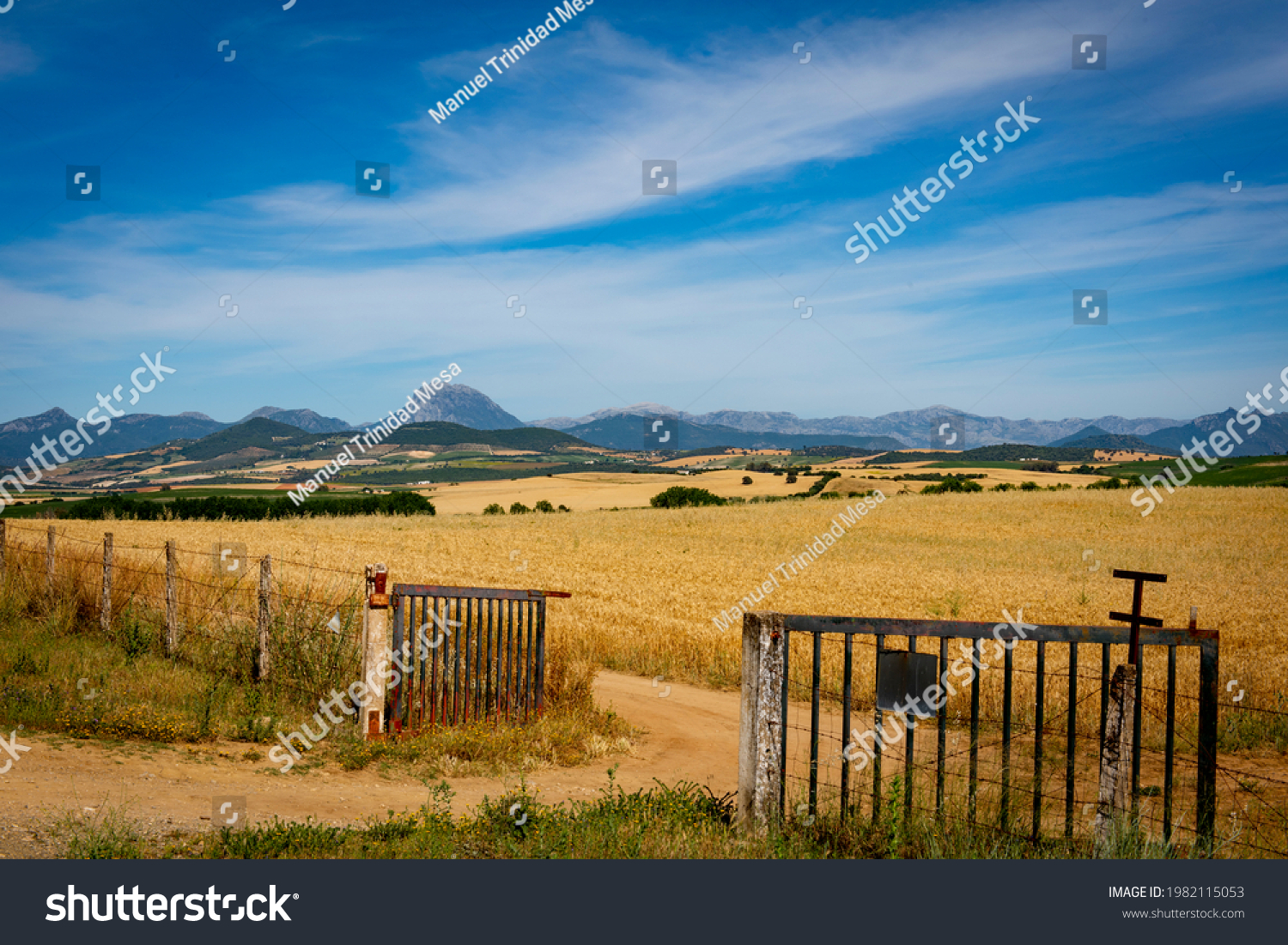 Entrance to a dry wheat field, mountains in the background