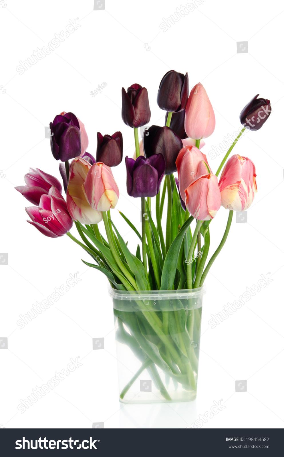 Beautiful bouquet tulips transparent vase isolated stock photo beautiful bouquet of tulips in transparent vase isolated on white background floridaeventfo Gallery