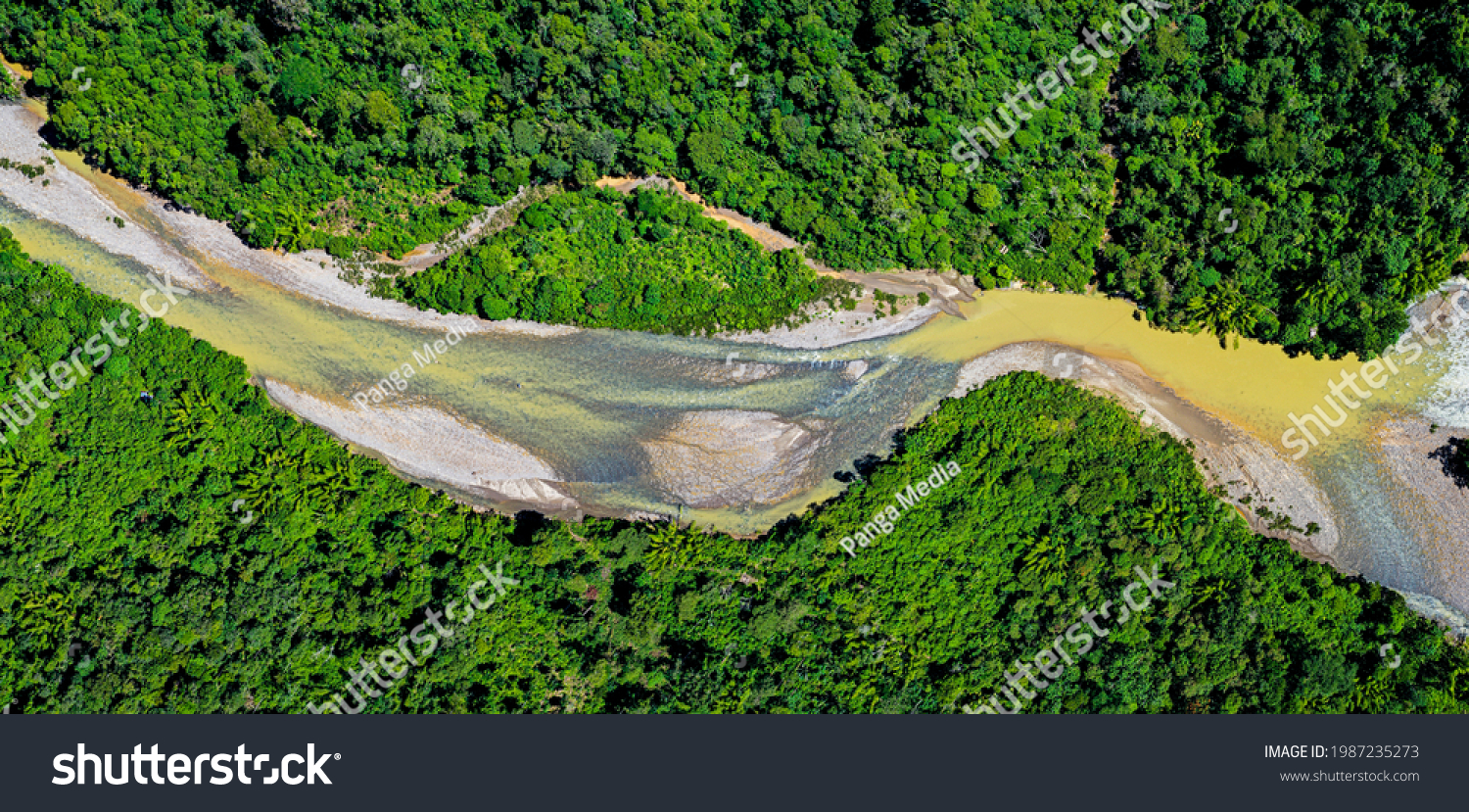Panorama of a tropical river meandering through the rainforest