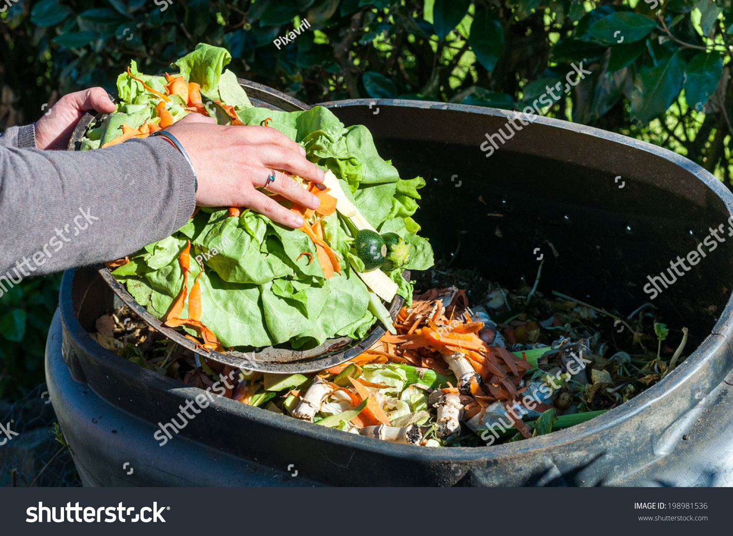 Image result for kitchen waste