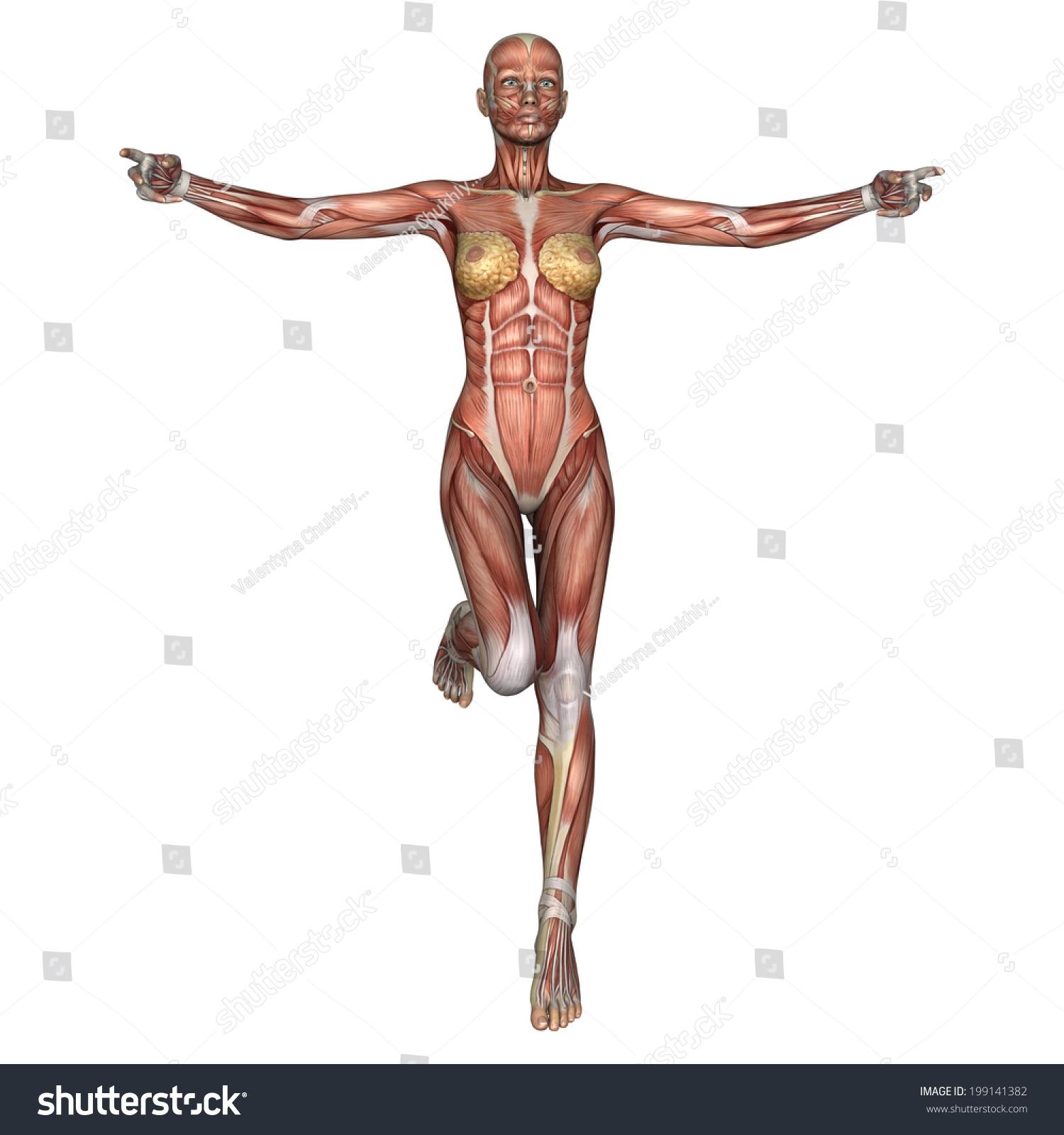 Royalty Free Stock Illustration Of 3 D Digital Render Exercising