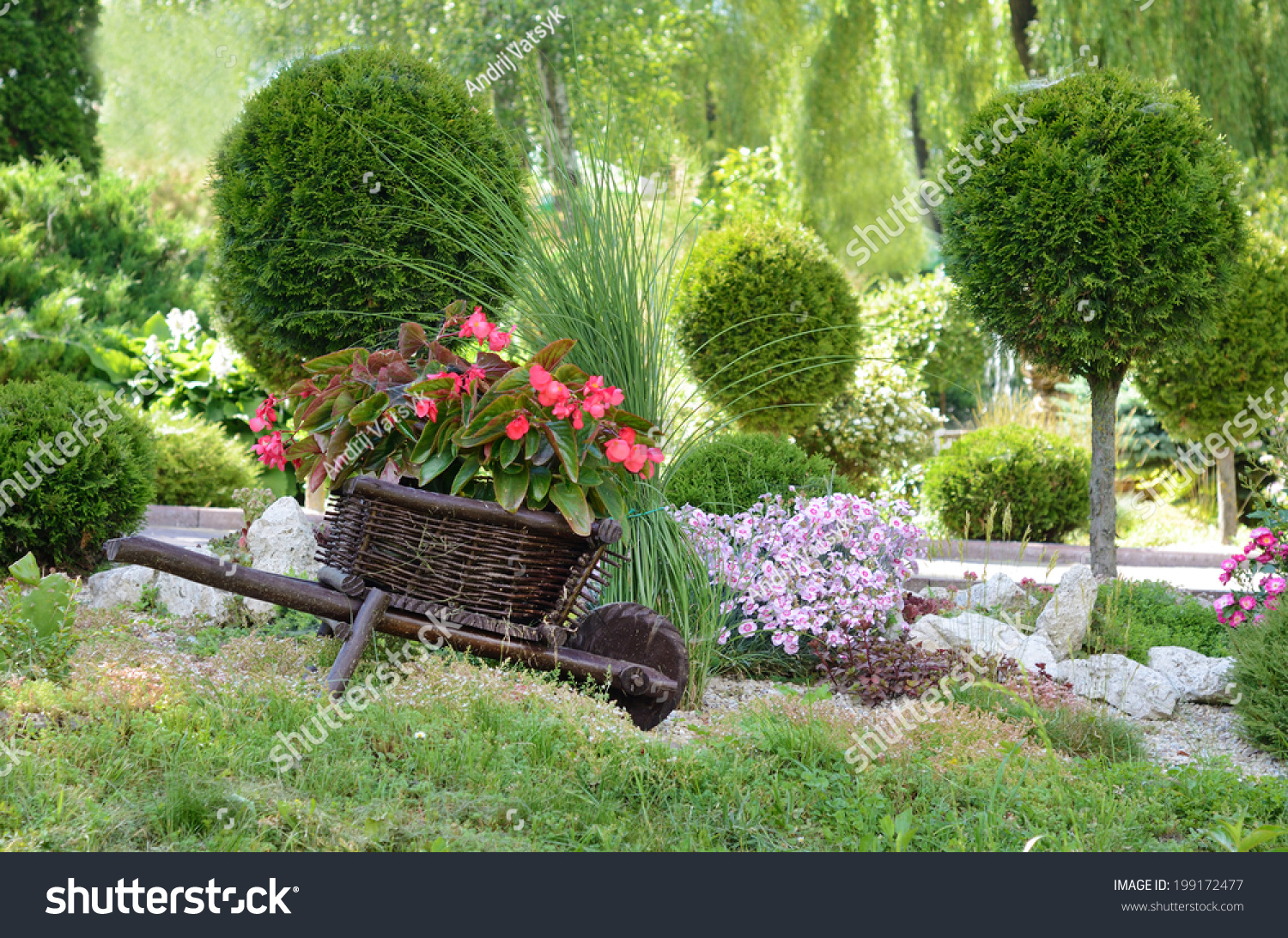Red Flowers Garden On Small Decorative Stock Photo (Royalty Free ...