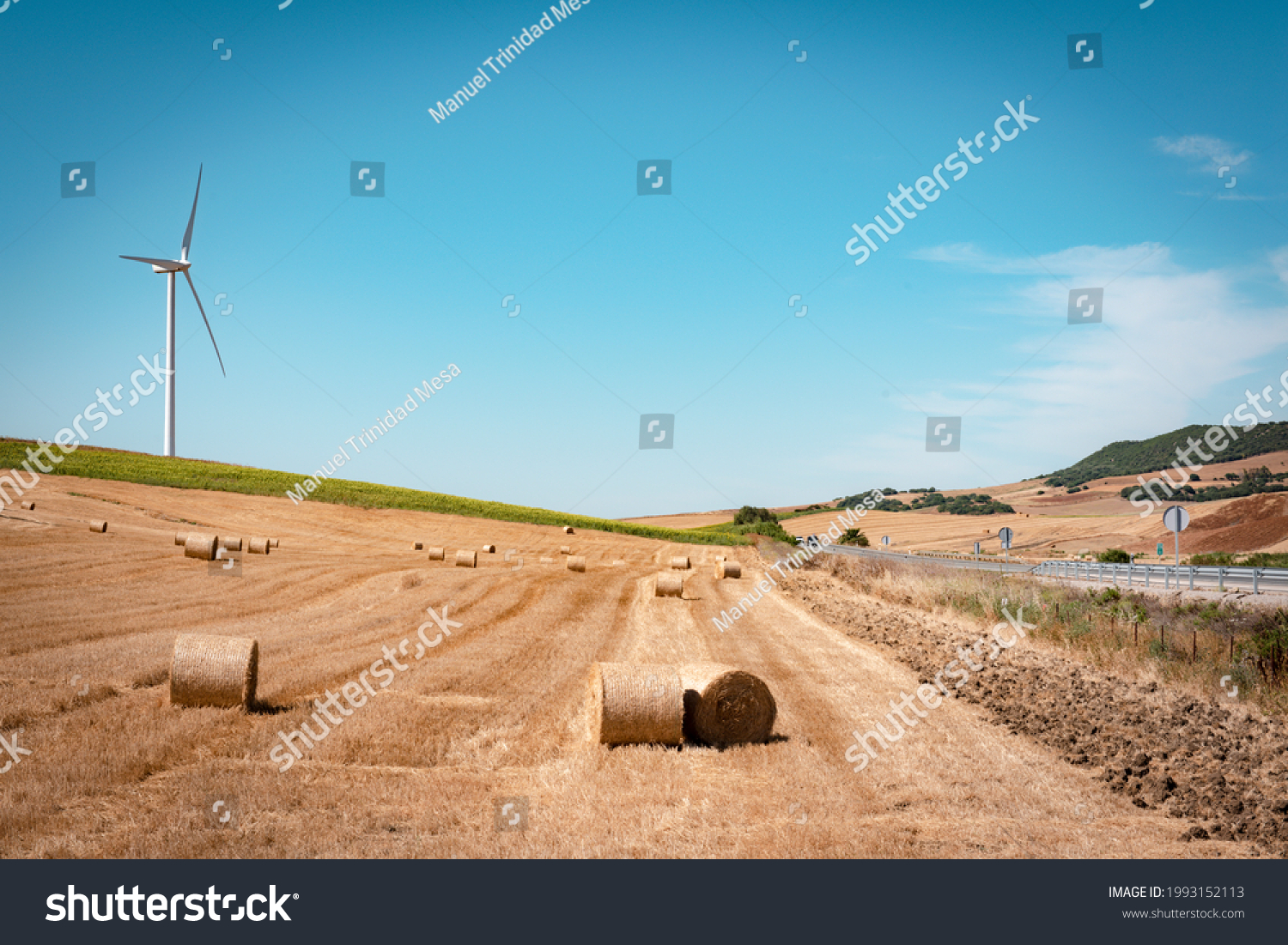 Field with round straw bales and a wind turbine in the background