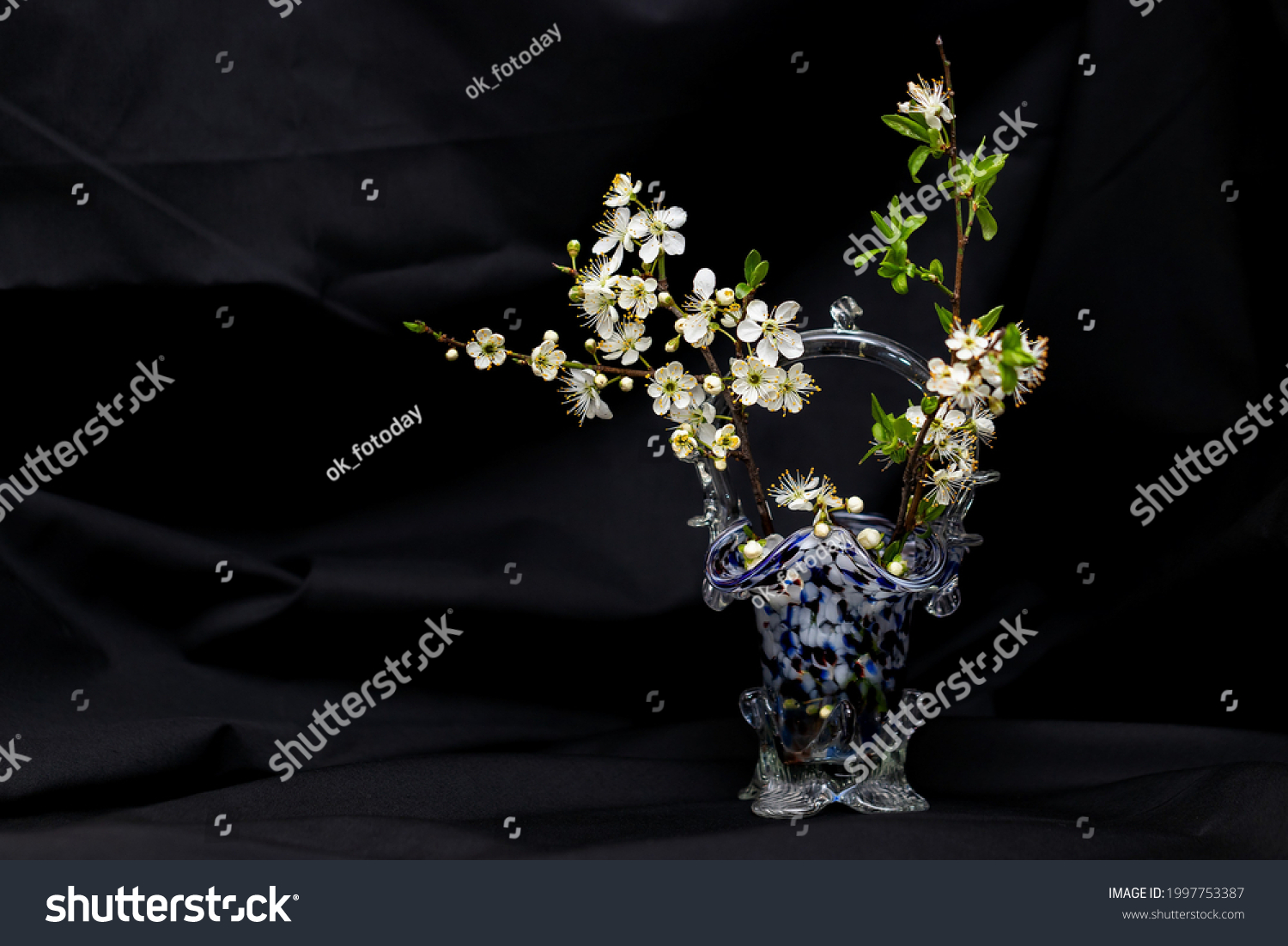 Composition of a sprig with small white flowers of a wild plum in a small vase of moire Czech glass on a black background
