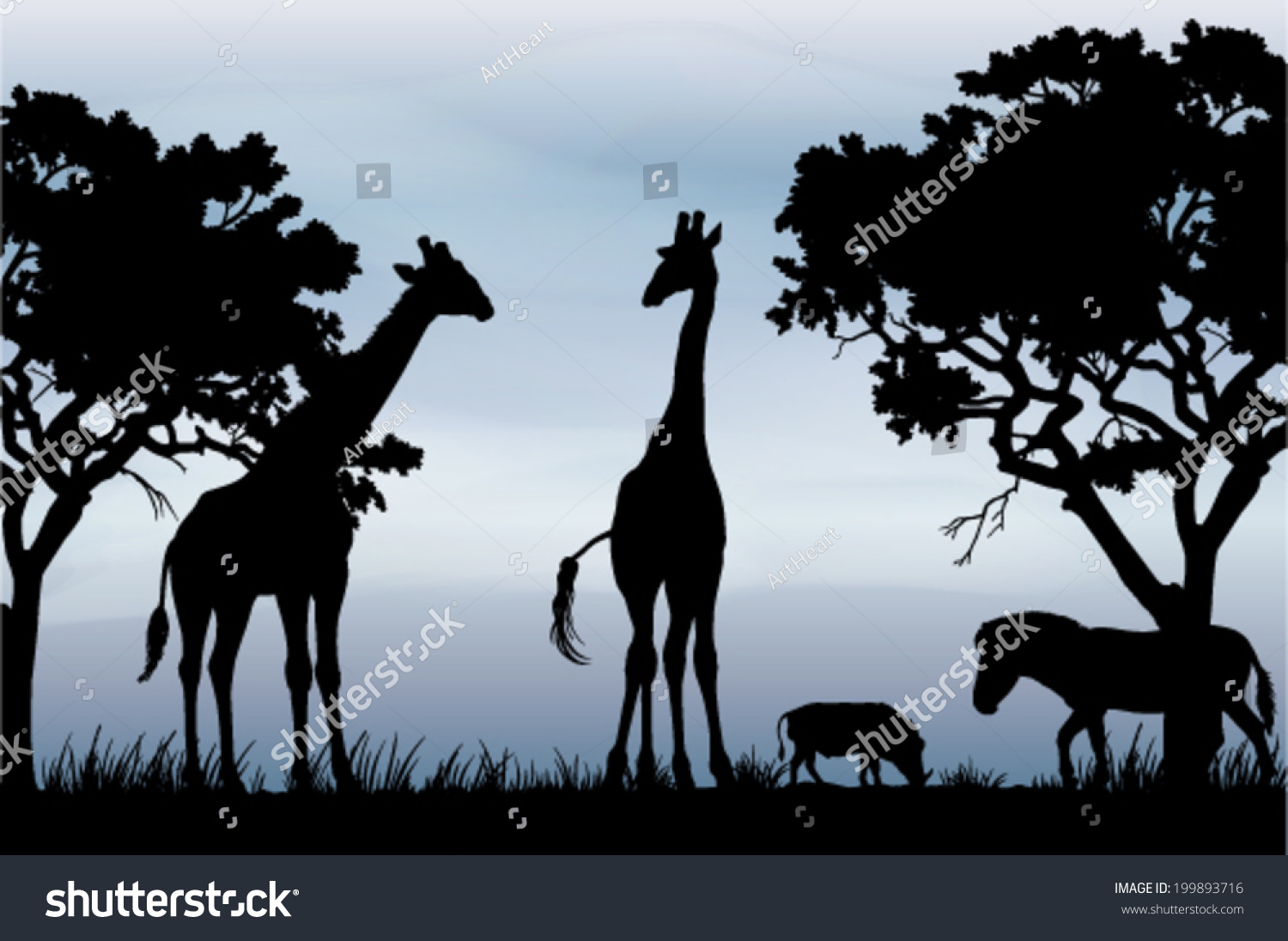 black white vector silhouettes beautiful african stock vector