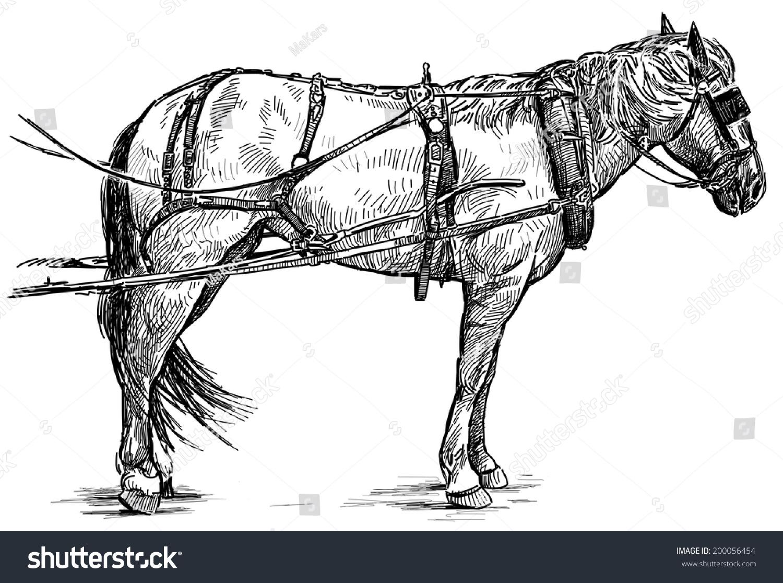 Royalty Free Stock Illustration of Harness Horse Stock Illustration
