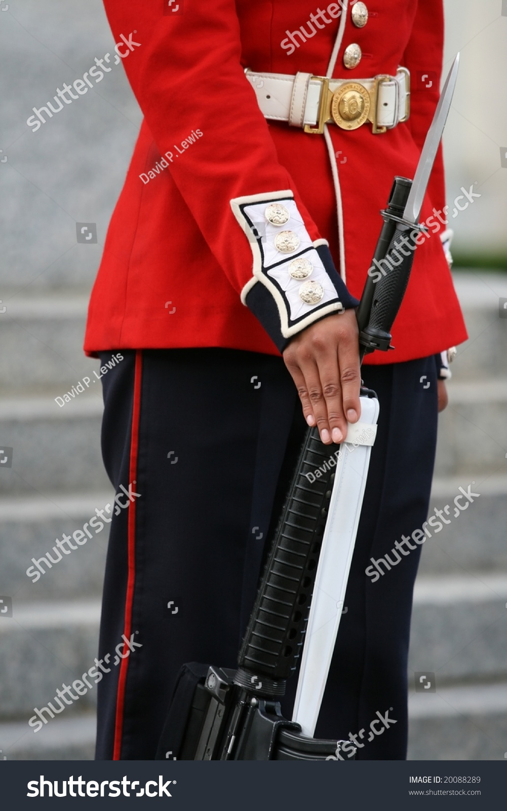 The governor general s foot guards - A Governor General S Foot Guard Standing At Attention Ottawa Ontario Canada Preview Save To A Lightbox