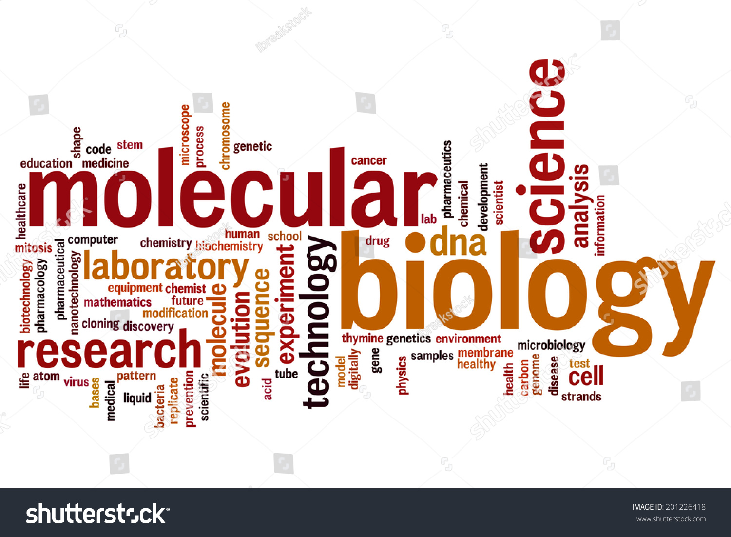 Molecular Biology best bachelor degrees 2017