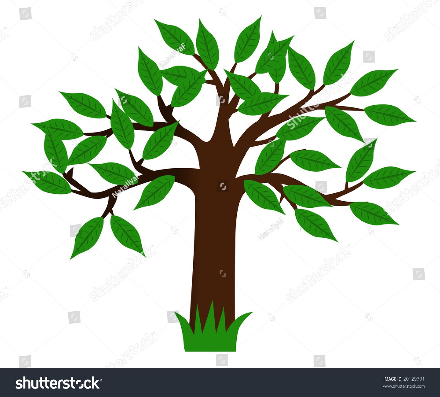 Drawing Green Tree Leaves Stock Illustration 20129791 ...
