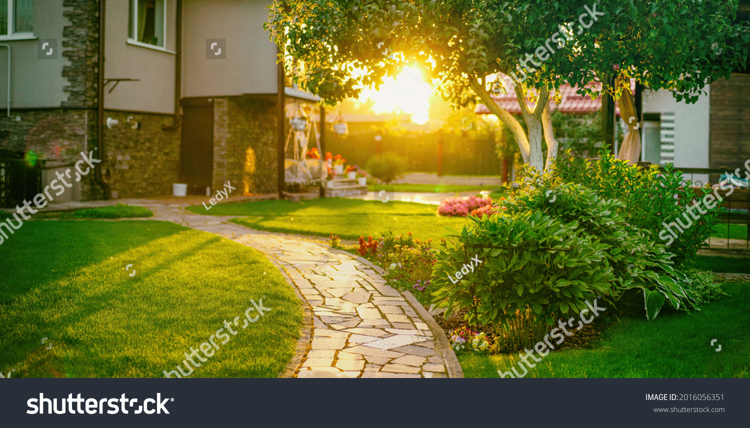 Beautiful manicured lawn and flowerbed with deciduous shrubs on private plot and track to house against backlit bright warm sunset evening light on background. Soft focusing in foreground. #2016056351