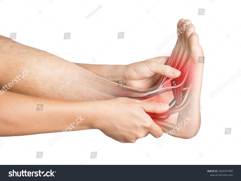 heel muscle pain white background heel injury #2026347989