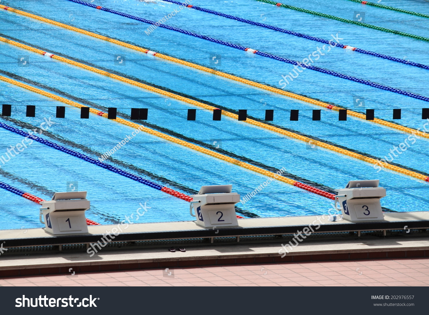 Starting Blocks In A Olympic Swimming Pool