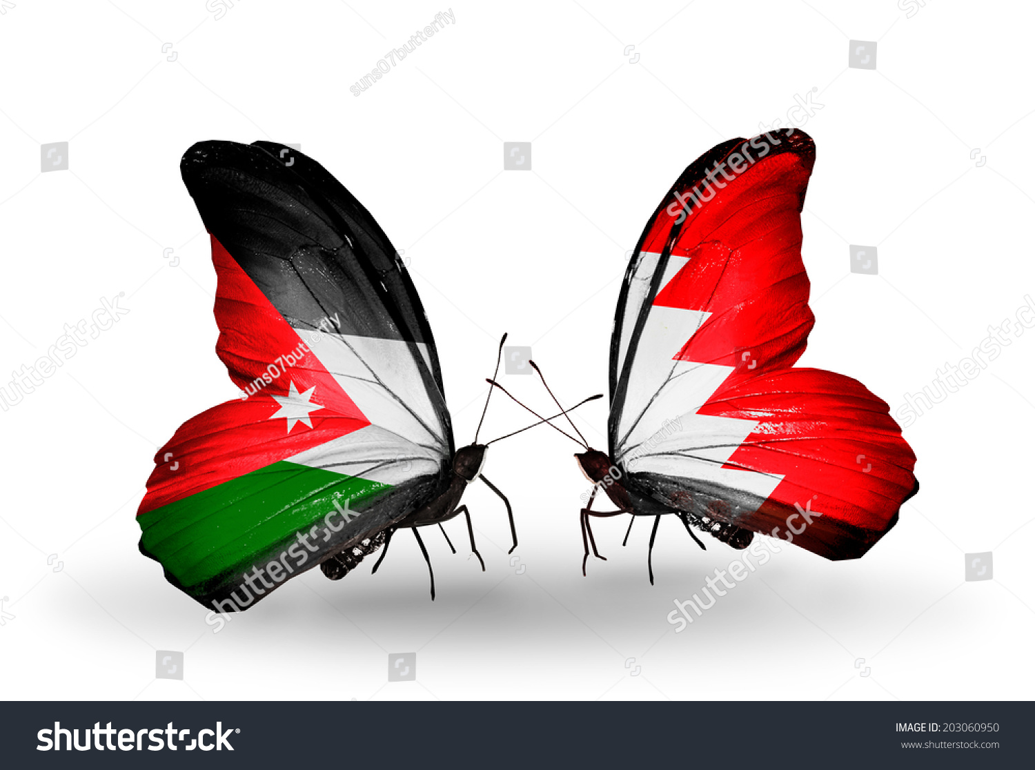 Two butterflies with flags on wings as symbol of relations Jordan and Bahrain