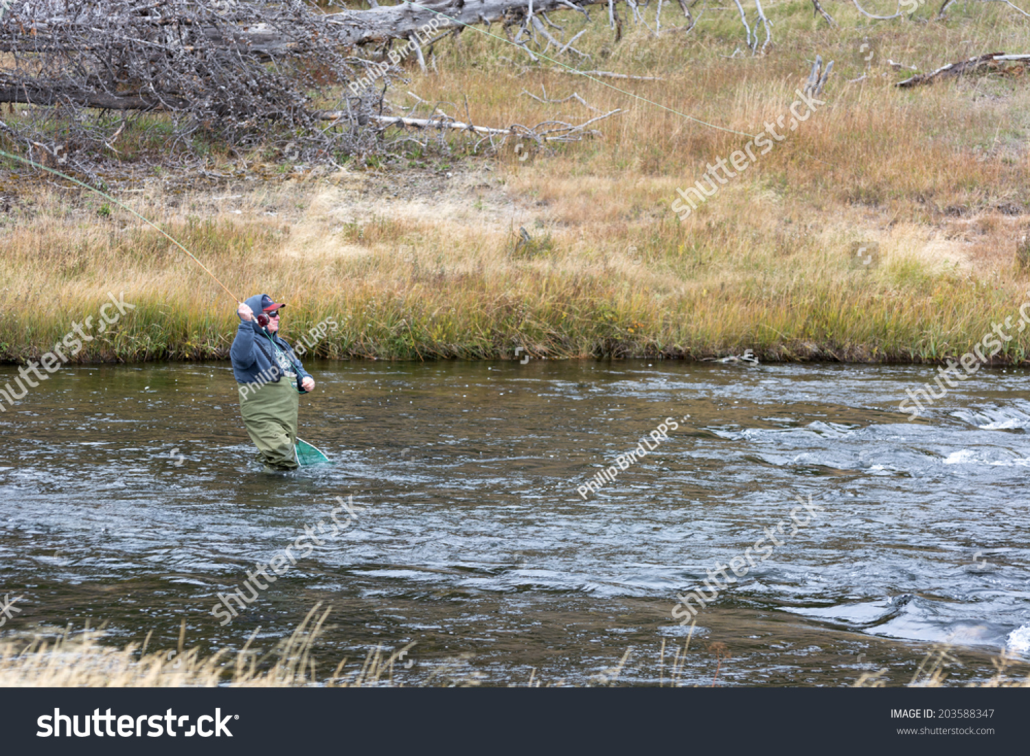 Fairy creek yellowstoneusa september 28 fly stock photo for Fly fish usa