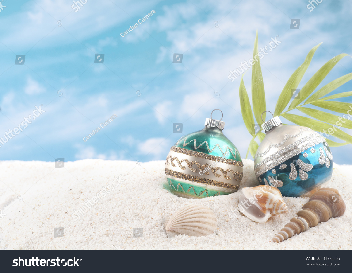 Christmas beach ornaments - Christmas On The Beach With Two Vintage Ornaments Sea Shells And Palm Frond White