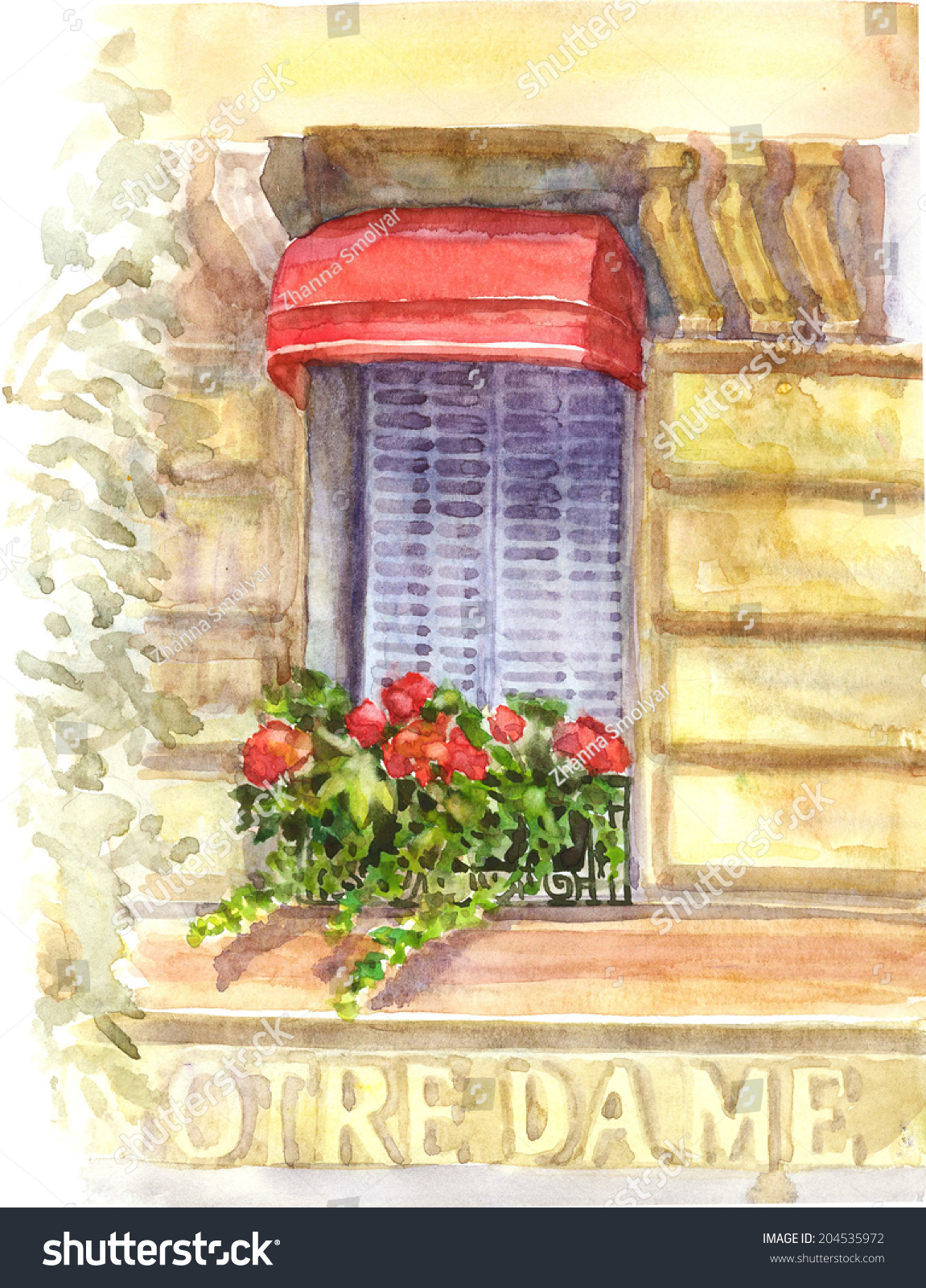 Beautiful Window Red Geranium Flowers Paris Stock