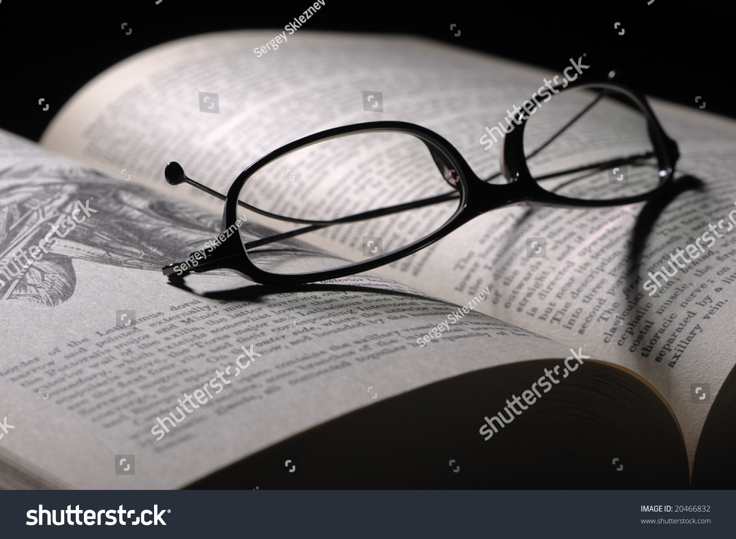 Reading Glasses On Anatomy Guide Stock Photo (Safe to Use) 20466832 ...