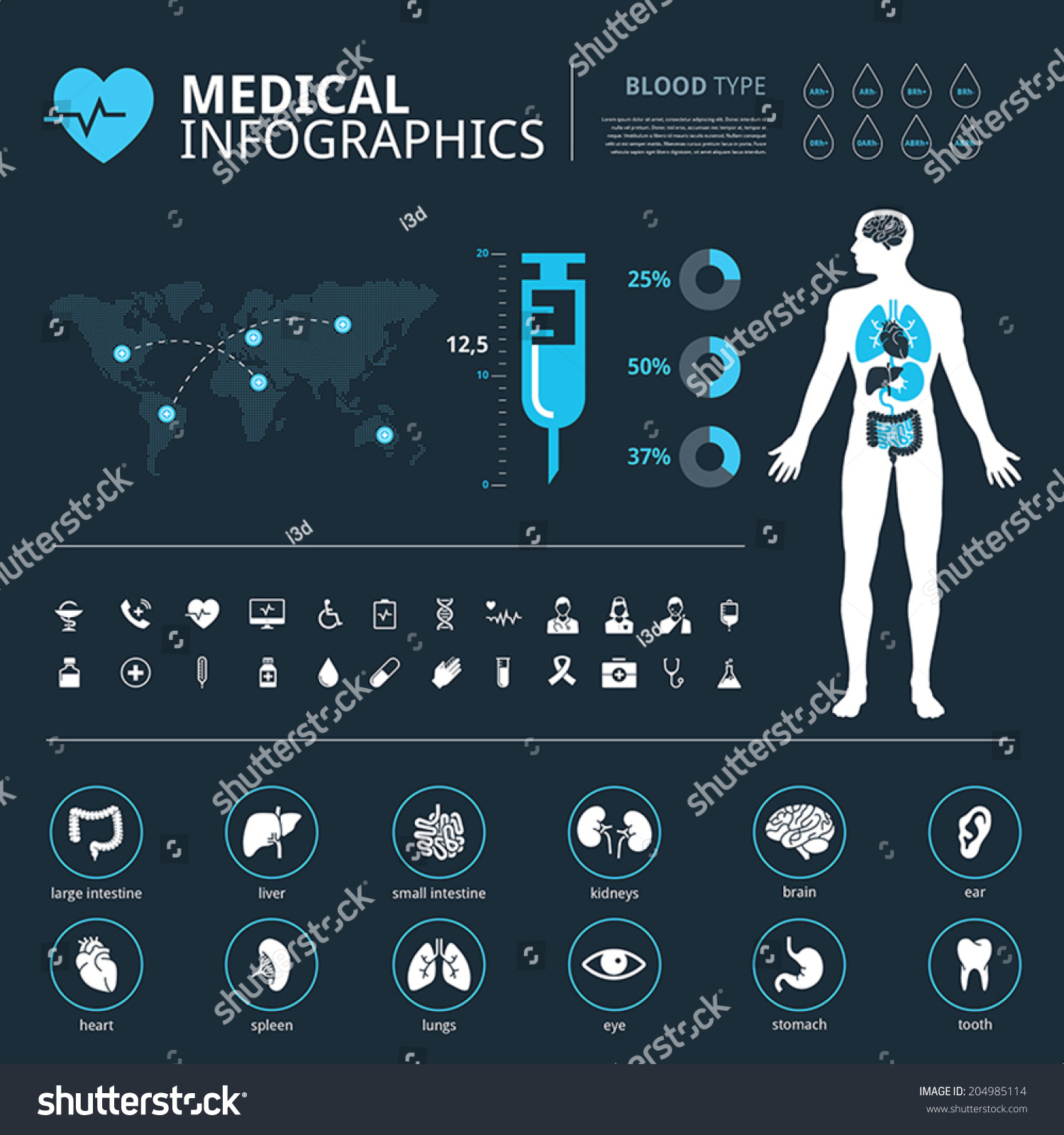 Medical Human Organs Icon Set Human Stock Vector Royalty Free