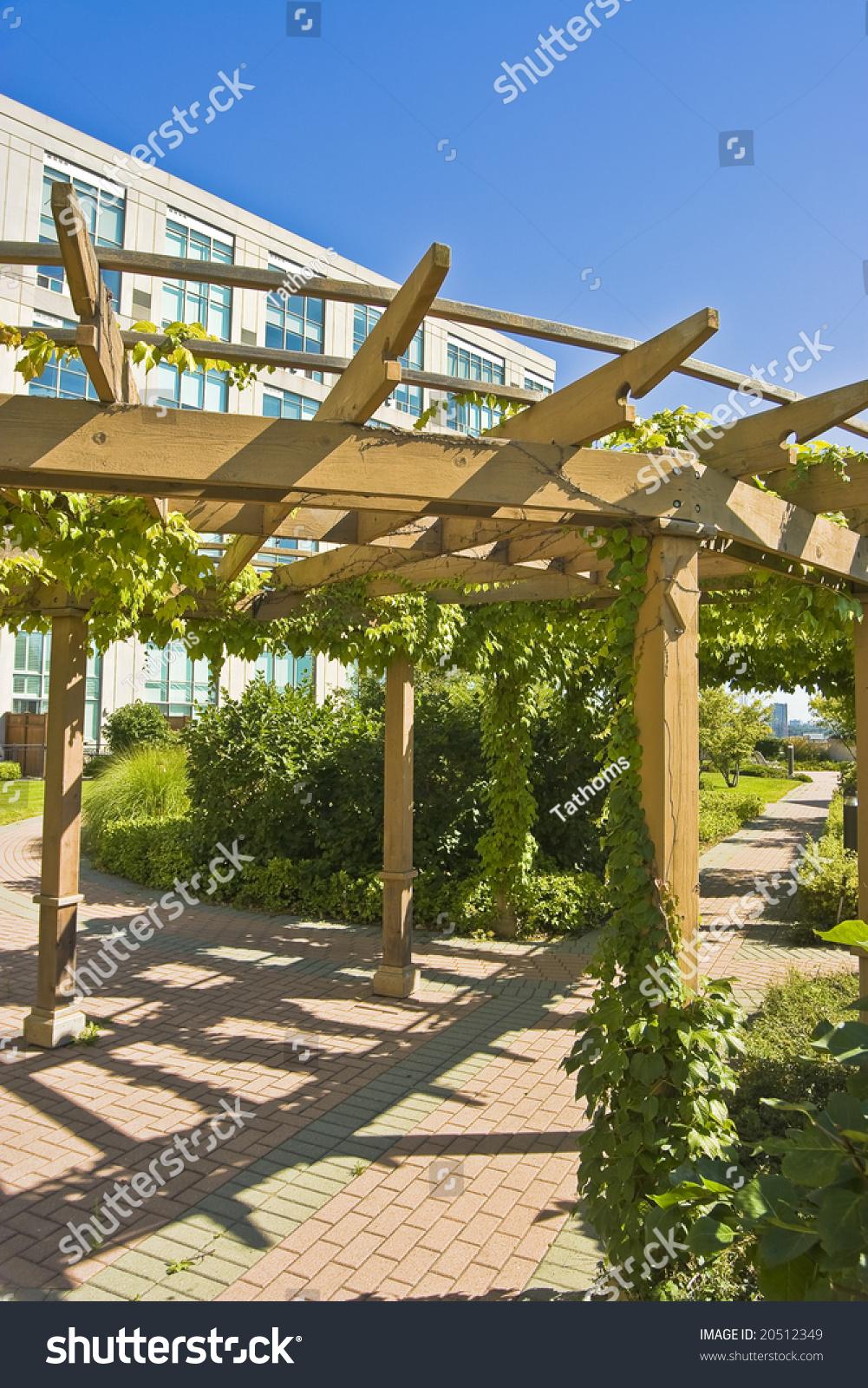 Roof top garden pergola