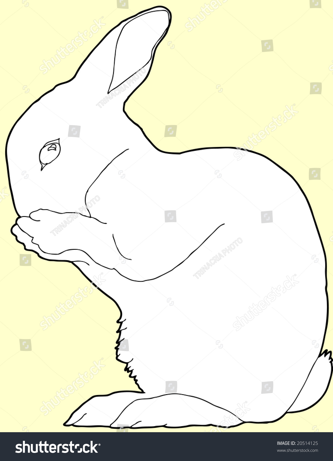 Line Art Easter Bunny : Contour line drawing of easter bunny stock vector