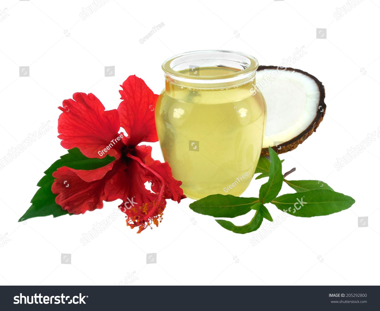 Hair oil prepared coconut oil hibiscus stock photo royalty free hair oil prepared from coconut oil hibiscus and henna izmirmasajfo
